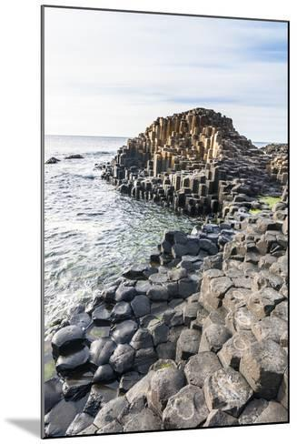 The Giants Causeway, County Antrim, Ulster, Northern Ireland, United Kingdom-Michael Runkel-Mounted Photographic Print