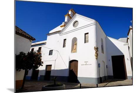 Nuestra Senora De La Paz Church, Cordoba, Andalucia, Spain-Carlo Morucchio-Mounted Photographic Print