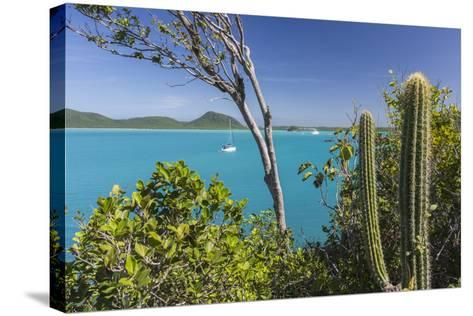 Panoramic View of Spearn Bay from a Hill Overlooking the Quiet Lagoon Visited by Many Sailboats-Roberto Moiola-Stretched Canvas Print
