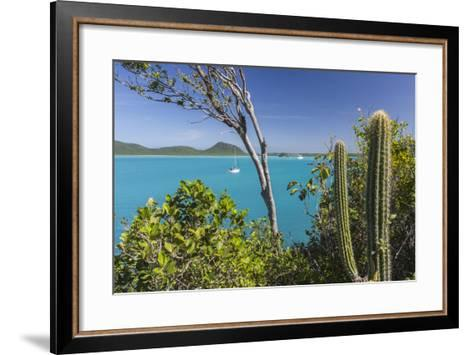 Panoramic View of Spearn Bay from a Hill Overlooking the Quiet Lagoon Visited by Many Sailboats-Roberto Moiola-Framed Art Print