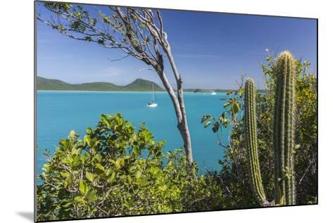 Panoramic View of Spearn Bay from a Hill Overlooking the Quiet Lagoon Visited by Many Sailboats-Roberto Moiola-Mounted Photographic Print
