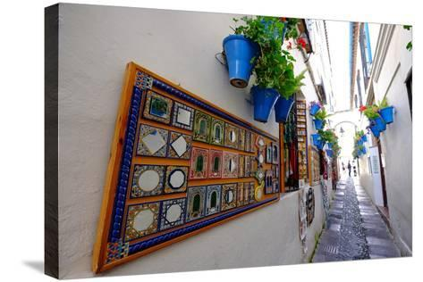 Calle De Las Flores, Cordoba, Andalucia, Spain-Carlo Morucchio-Stretched Canvas Print