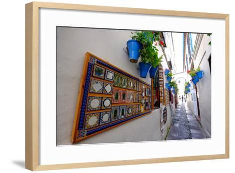 Calle De Las Flores, Cordoba, Andalucia, Spain-Carlo Morucchio-Framed Art Print
