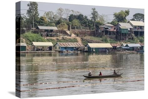 Cham People Using a Dai Fishing System for Trei Real Fish on the Tonle Sap River, Cambodia-Michael Nolan-Stretched Canvas Print