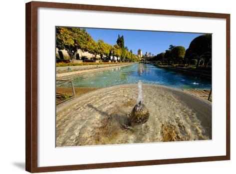 Fountain in the Alcazar De Los Reyes Cristianos, Cordoba, Andalucia, Spain-Carlo Morucchio-Framed Art Print