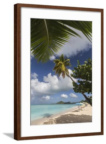The Branches of the Palm Trees Create Shade on the Beach of Valley Church-Roberto Moiola-Framed Art Print