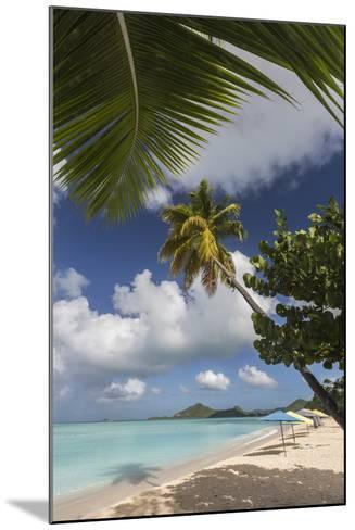 The Branches of the Palm Trees Create Shade on the Beach of Valley Church-Roberto Moiola-Mounted Photographic Print