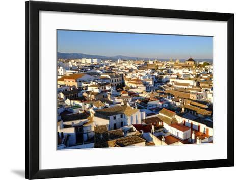 View of Cordoba from the Mezquita Cathedral Bell Tower, Cordoba, Andalucia, Spain-Carlo Morucchio-Framed Art Print
