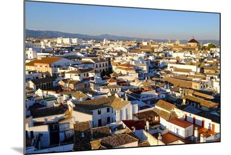 View of Cordoba from the Mezquita Cathedral Bell Tower, Cordoba, Andalucia, Spain-Carlo Morucchio-Mounted Photographic Print