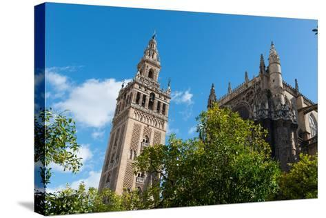 Sevilla Cathedral and Giralda, Seville, Andalucia, Spain-Carlo Morucchio-Stretched Canvas Print