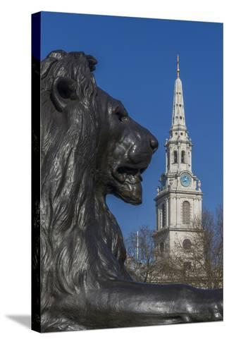 Lion at Foot of Nelson's Column and St. Martin-In-The-Fields Church-Rolf Richardson-Stretched Canvas Print