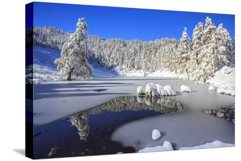 Snow Covered Trees Reflected in the Casera Lake-Roberto Moiola-Stretched Canvas Print