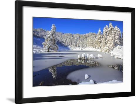 Snow Covered Trees Reflected in the Casera Lake-Roberto Moiola-Framed Art Print