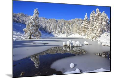 Snow Covered Trees Reflected in the Casera Lake-Roberto Moiola-Mounted Photographic Print