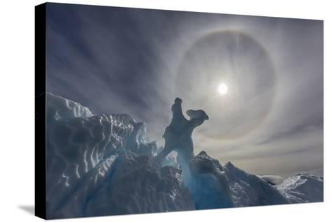 Complete Sun Halo and Glacial Iceberg Detail at Cuverville Island, Antarctica, Polar Regions-Michael Nolan-Stretched Canvas Print
