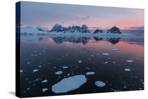 Sunrise over Wiencke Island in the Neumayer Channel, Antarctica, Polar Regions-Michael Nolan-Stretched Canvas Print