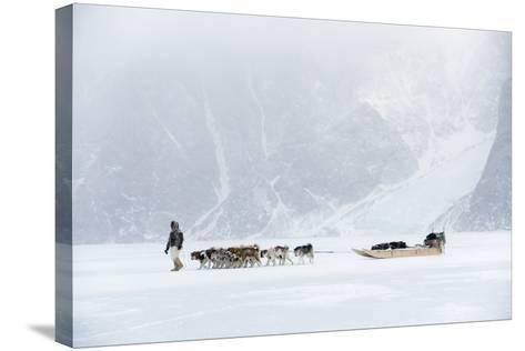 Inuit Hunter Walking His Dog Team on the Sea Ice in a Snow Storm, Greenland, Denmark, Polar Regions-Louise Murray-Stretched Canvas Print