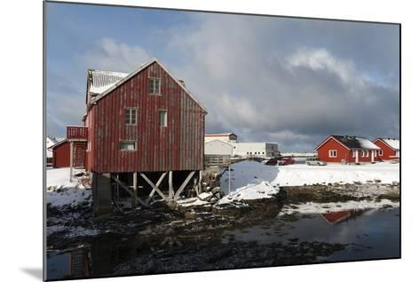 Andenes, Vesteralen Islands, Arctic, Norway, Scandinavia-Sergio Pitamitz-Mounted Photographic Print