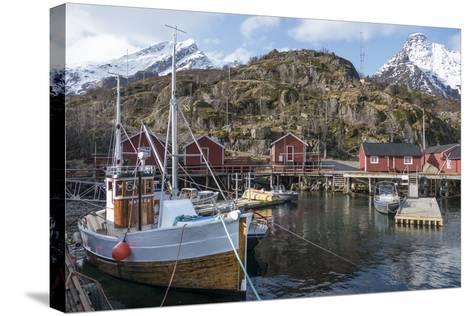 Nusfjord, Lofoten Islands, Nordland, Arctic, Norway, Scandinavia-Rolf Richardson-Stretched Canvas Print