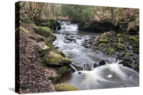 Waterfall on Harden Beck in Goitstock Wood, Cullingworth, Yorkshire, England, UK-Mark Sunderland-Stretched Canvas Print