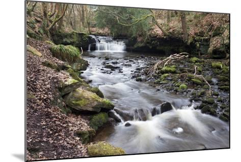 Waterfall on Harden Beck in Goitstock Wood, Cullingworth, Yorkshire, England, UK-Mark Sunderland-Mounted Photographic Print