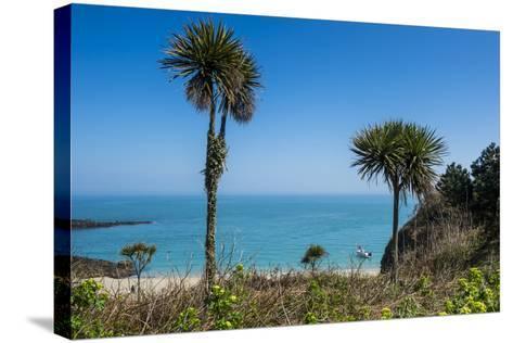 Belvoir Bay, Herm, Channel Islands, United Kingdom-Michael Runkel-Stretched Canvas Print