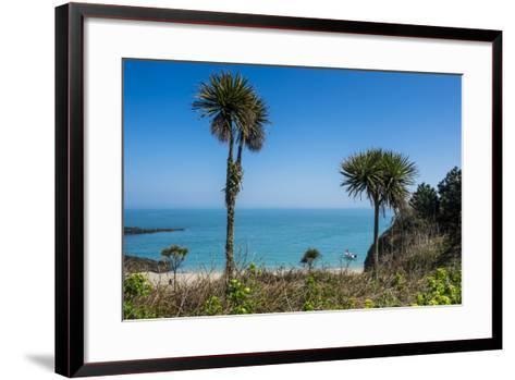 Belvoir Bay, Herm, Channel Islands, United Kingdom-Michael Runkel-Framed Art Print