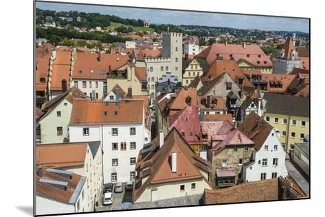 View over Regensburg from the Tower of the Church of the Holy Trinity, Regensburg, Bavaria, Germany-Michael Runkel-Mounted Photographic Print