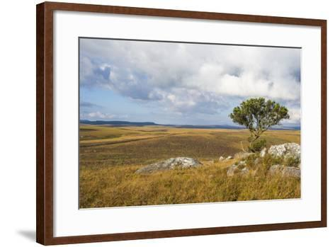 Overlook over the Highlands of the Nyika National Park, Malawi, Africa-Michael Runkel-Framed Art Print