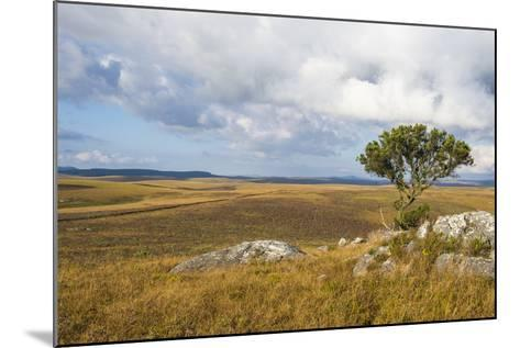 Overlook over the Highlands of the Nyika National Park, Malawi, Africa-Michael Runkel-Mounted Photographic Print