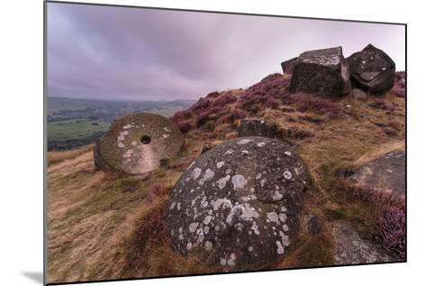 Millstone Amongst Heather and Lichen Covered Boulders at Dawn-Eleanor Scriven-Mounted Photographic Print