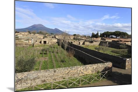Elevated View to Mount Vesuvius-Eleanor Scriven-Mounted Photographic Print