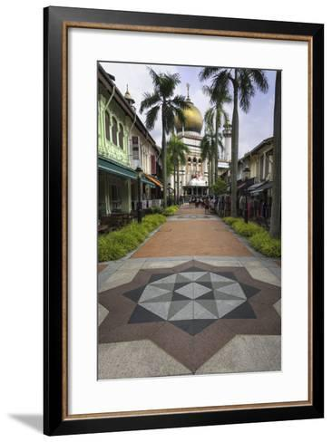 Road Leading to the Sultan Mosque in the Arab Quarter, Singapore, Southeast Asia, Asia-John Woodworth-Framed Art Print
