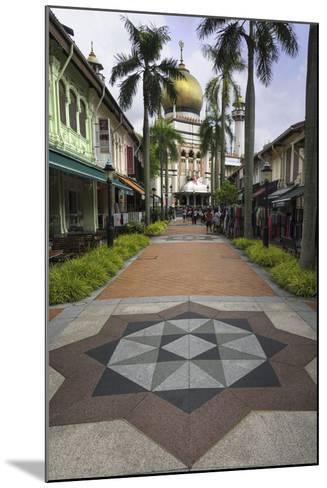Road Leading to the Sultan Mosque in the Arab Quarter, Singapore, Southeast Asia, Asia-John Woodworth-Mounted Photographic Print