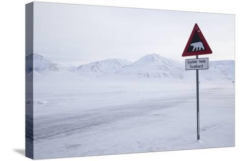 Beware of Polar Bear Traffic Sign on Ice Road-Stephen Studd-Stretched Canvas Print