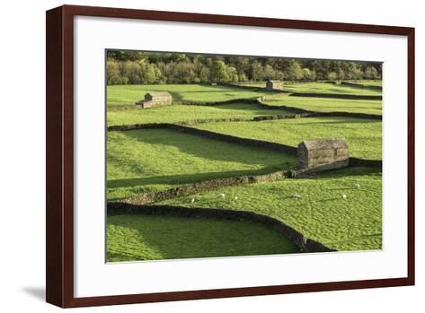 Barns and Dry Stone Walls at Gunnerside-John Woodworth-Framed Art Print