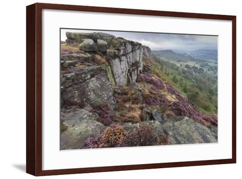 Heather on Curbar Edge at Dawn-Eleanor Scriven-Framed Art Print