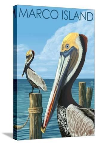 Marco Island - Pelicans-Lantern Press-Stretched Canvas Print