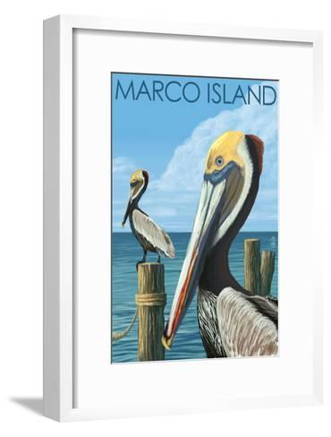 Marco Island - Pelicans-Lantern Press-Framed Art Print