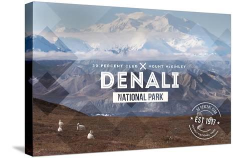 Denali National Park, Alaska - 30% Club-Lantern Press-Stretched Canvas Print