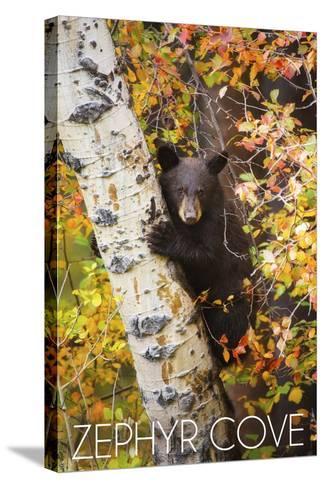 Zephyr Cove - Lake Tahoe, California - Bear Cub in Tree-Lantern Press-Stretched Canvas Print