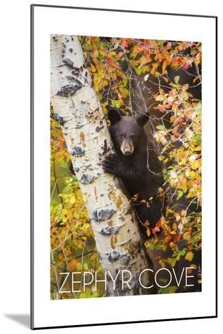 Zephyr Cove - Lake Tahoe, California - Bear Cub in Tree-Lantern Press-Mounted Art Print