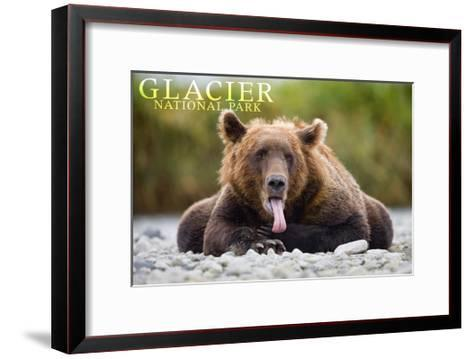 Glacier National Park - Grizzly Bear with Tongue Out-Lantern Press-Framed Art Print