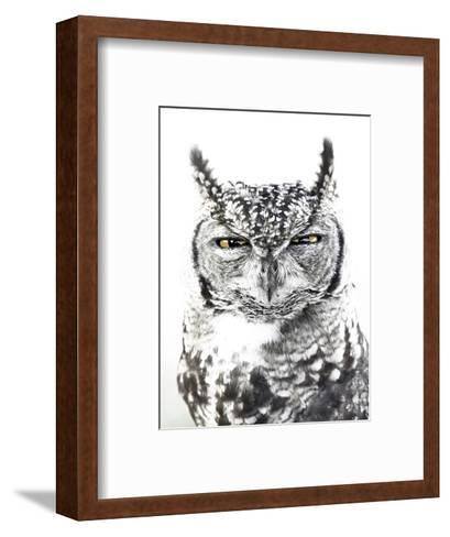 Spotted Eagle Owl, Kgalagadi Transfrontier Park, South Africa-James Hager-Framed Art Print
