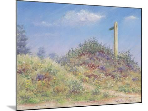 Public Footpath, 2002-Anthony Rule-Mounted Giclee Print