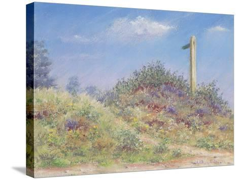 Public Footpath, 2002-Anthony Rule-Stretched Canvas Print