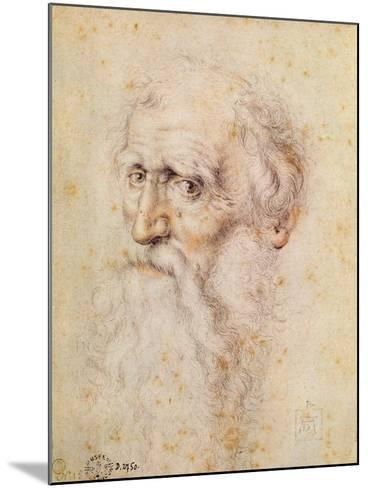 Portrait of a Bearded Old Man-Albrecht D?rer-Mounted Giclee Print