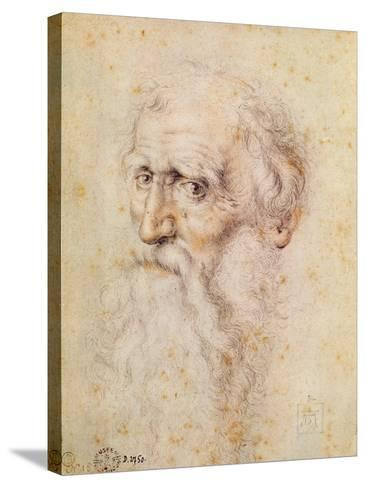 Portrait of a Bearded Old Man-Albrecht D?rer-Stretched Canvas Print
