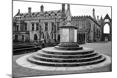 Newstead Abbey-Staff-Mounted Photographic Print