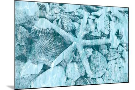 East Coast Shells II-Jairo Rodriguez-Mounted Art Print
